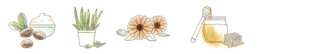 crema-balsamo-ingredientes-simbolos-carelia-cositasdebebes